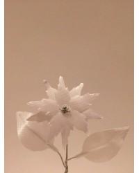 Бутониера цвете